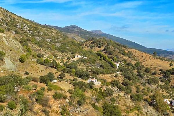 Andalusisk Finca Til Salg I Malaga Costa Del Sol For 340 000